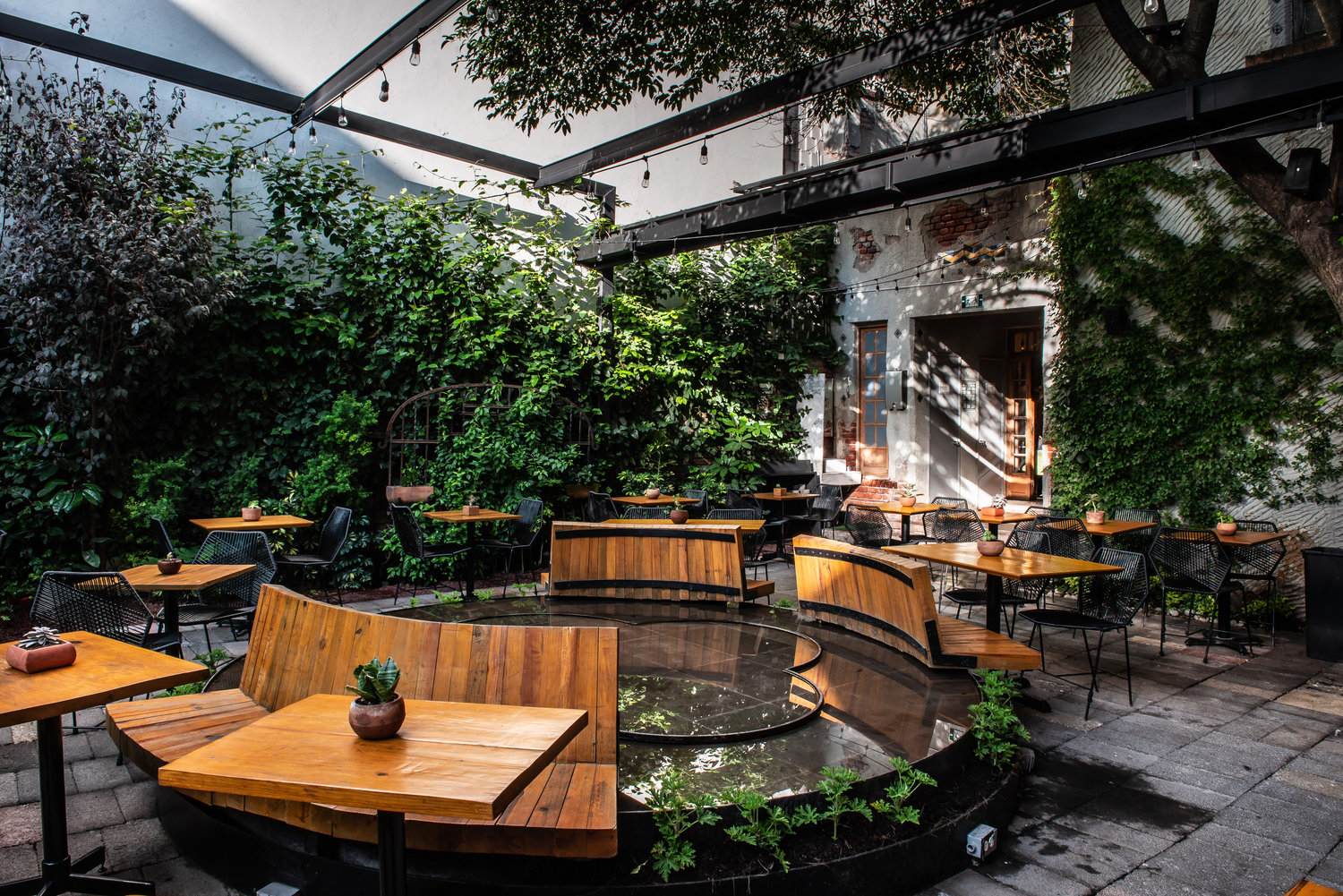 Freims best coffee shops in Mexico City Digital Nomad