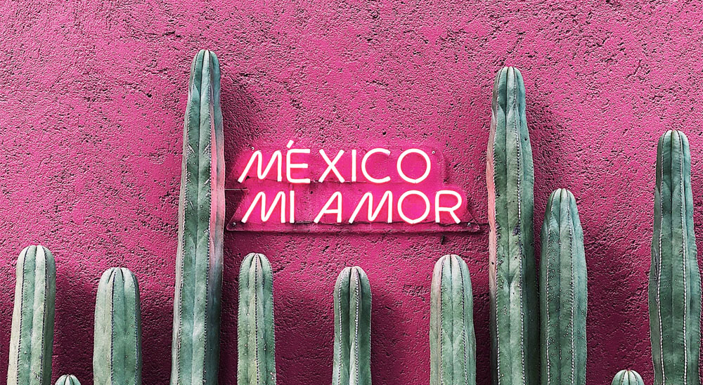 best coffee shops in Mexico City Digital Nomad