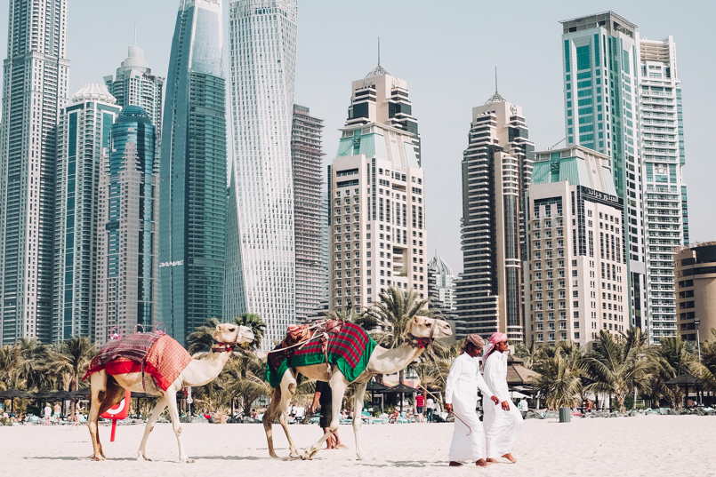 Middle Eastern men with camels and skyscappers in Dubai, United Arab Emirates - Gurvi Movement