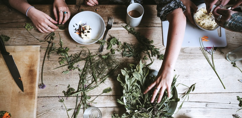 Best Medicinal Herbs for Energy and Motivation - Gurvi Movement