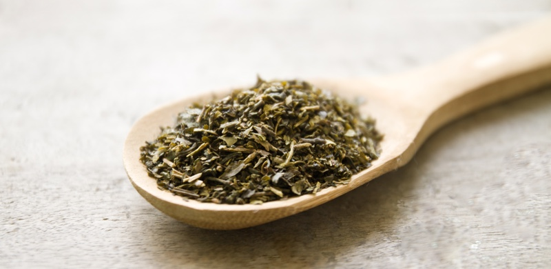 Oregano - Medicinal Herbs to Boost Energy and Focus - Gurvi Movement